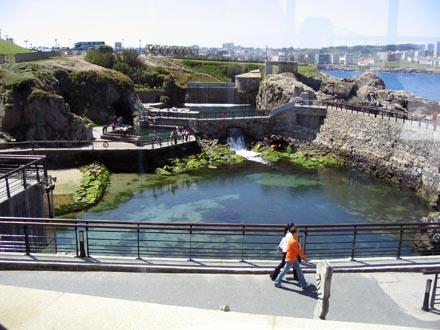 Aquarium Finisterrae - Piscinarium